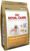 Royal Canin Breed Health Nutrition Poodle Adult Dry Dog Food, 1.1kg, New, Fr