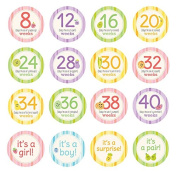 Pearhead Pregnancy Milestone Photo Sharing Belly Stickers, 16 Stickers