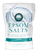 TWO PACKS of Elysium Spa Epsom Salts Eucalyptus 450g