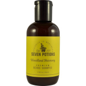 Seven Potions - Beard Shampoo for Men 100 ml. Make Your Beard Softer And Cleaner With The Best Beard Wash. Conditions Deeply with Natural Ingredients. Soft Beard Cleanser that Stops Beard Itch