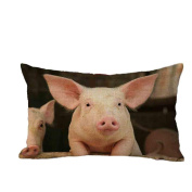 Pillow Case,TOPUNDER Cute Rectangle Sofa Bed Decoration Festival Cushion Cover G