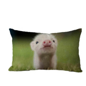 Pillow Case,TOPUNDER Cute Rectangle Sofa Bed Decoration Festival Cushion Cover A