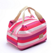 Anshinto Picnic Insulated Food Storage Zipper Box Tote Bento Pouch Portable Lunch Bag