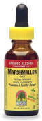 Nature's Answer Marshmallow Root with Organic Alcohol, 1-Fluid Ounce