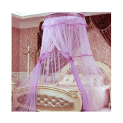 Hengfey Bed Canopy Home Mosquito Net Insect Bug Protection Lace Netting Purple