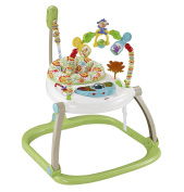 Fisher-Price Jumperoo Baby Walker Small