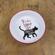 The Bright Side Cat Bowl - To Do 1