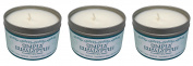 Our Own Candle Company Soy Wax Aromatherapy Scented Candle, Simply Eucalyptus, 190ml
