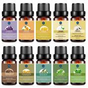 Essential Oils Set,Aromatherapy Oils Top 10 Pcs Kit,Therapeutic Grade