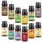 Essential Oils Set,Aromatherapy Oils Top 12 Kit,Therapeutic Grade