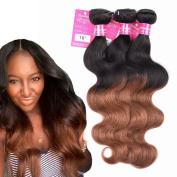 Stephanie Hair Ombre Brazilian Hair Extension Bundles 7A Unprocessed Brazilian Virgin Hair Ombre Body Wave Brazilian Human Hair Weave Colour 1B/30 (100+/-5g)/pc