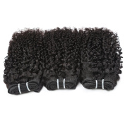 Longjia Malaysian Kinky Curly Virgin Hair 3 Bundles Natural Black Can be Dyed and Bleached 100% Unprocessed Human Hair Weave Total 300g/lot