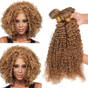 Black Rose Hair 8A Brazilian Virgin Curly Hair 3 Bundles Weave 100% Unprocessed Brazilian Sexy Human Hair Extension Curly Wave Coloured 27# Honey Blonde