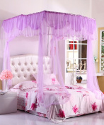 U-type Princess Telescopic Mosquito Net Square Top Three Doors Thick Stainless Steel Mosquito Net Bed Canopy Curtain