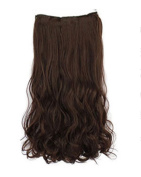 BarRan One Piece Long Curl curly wavy Synthetic Thick Hair Extensions Clip-on Hairpieces 5 Colours