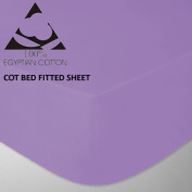 Goldstar® Lilac Cot Bed Fitted Sheet 100% Egyptian Cotton 200 Thread Count, 70 x 140cm