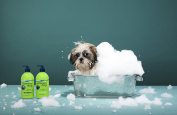 Underwater Dogs - Soap Free Dog Shampoo and Conditioner Set - Vanilla/Coconut - Eliminates Pet Odour and Relieves Itchy Skin