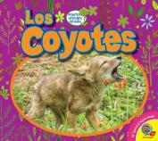 Los Coyotes (Coyotes) (Pequenos Animales del Patio