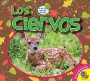Los Ciervos (Deer) (Pequenos Animales del Patio