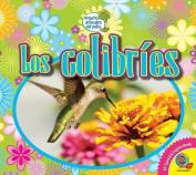 Los Colibries (Hummingbirds) (Pequenos Animales del Patio  [Spanish]