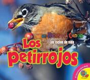 Los Petirrojos (Robins) (Ninos y la Ciencia [Spanish]