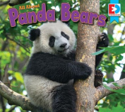 All about Pandas (Eyediscover)