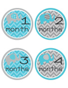Blue Elephant Baby Belly Stickers