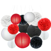 Fascola Tissue Paper Pom Pom Flowers and Paper Lanterns Party Decoration, 14 Pieces