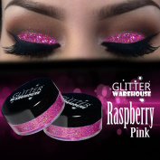 Raspberry Pink GlitterWarehouse Holographic Glitter Great for Eyeshadow / Eye Shadow, Makeup, Body Tattoo, Nail Art and More!