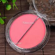 Cosmetic 2 Colros Blush Blusher Powder Bronzer Cheek Fave Beauty Makeup Palette