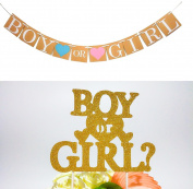 "Boy or Girl Gender Reveal Party - Pregnancy Announcement Party -""Boy or Girl"" Rustic Banner For Baby Shower, Newborn Baby Celebration party Decorations"