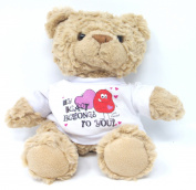 MY HEART BELONGS TO YOU 18cm TEDDY BEAR Romantic Love Gifts Idea Presents for her him Valentines Day Birthday Christmas your Boyfriend Girlfriend my Husband Wife Wedding Anniversary Gift Ideas