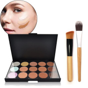 Hisight 15 Colour Camouflage Concealer Make Up Cream Palette with 2 pcs Pro Makeup Face Powder Blusher Toothbrush