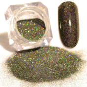 WISHNAIL Starry Holographic Holo Laser Powder Nail Art Powder Dust Glitter