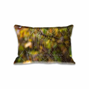 Delicate Spider Web Pillow Covers Protector Pattern Art Design Custom Rectangle Pillow Cases Standard Size 20x30