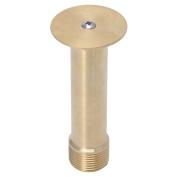 Techinal 1.3cm DN15 & 1.9cm DN20 Brass Nozzle Pond Hemispherical Fountain Pond Spray Head