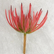Spikey Red Artificial Succulent Pick for Floral Arranging, Garden Creation and Crafting