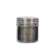 C-Pioneer 10ml Ultra Thin Gradient Nail Glitter Powder Nail Art Tips Decoration