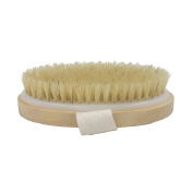 Boseen Natural Bristle Body Cellulite Brush, Clear Dead Skin Cells, Invigorate the Circulation of Blood