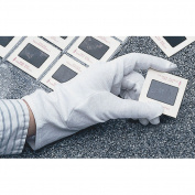 University Products Washable Cotton Gloves White 2 pair/pkg