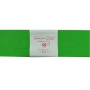 Alberts Large Crepe Paper - Light Green - 50cm x 250cm