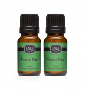Forest Pine Fragrance Oil - Premium Grade Scented Oil - 10ml - 2-Pack