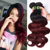 Fashion Lady Hair Brazilian Ombre Virgin Human Hair Body Wave Weft 3bundles/300g 100% Unprocessed Hair Extensions