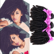XCCOCO Hair Unprocessed Virgin Curly Hair Brazilain Afro Kinky Curly Human Hair Weft Sexy Curly Hair for Black Women 100g/pc Natural Black Colour