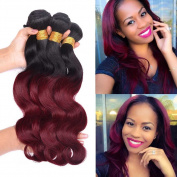 Fashion Lady Hair Malaysian Virgin Hair Body Wave 3 Bundles Malaysian Hair Weave Extensions Ombre Red Hair Colour 1b/99j