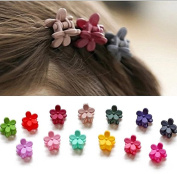 20pcs Women Girls Kids Assorted Colour Mini Metal Hair Snap Clips Barrettes Accessories for Little Girls