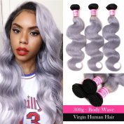 ANNMODE Peruvian Ombre Body wave Virgin Hair 1b/grey Two Tone Human Hair Bundles 30cm - 70cm 7a Ombre Human Virgin Hair Wavy Weaves 14 16 46cm