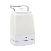 Lantern Travel LED Bedside Plugged Base Hanging Lamp Night Light For Adults Kid Decoration White Light