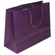 JAM Paper Matte Horizontal Bag - Large - 33cm x 25cm x 13cm - Purple - Sold Individually