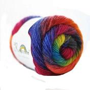 Celine lin One Skein 100% Wool Rainbow Series Hand knitting Yarn 100g,Multi-colored08